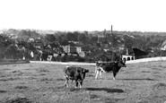 Shepton Mallet, c1955