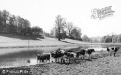 Sherborne, The River c.1960