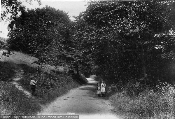 Photo of Shere, Combe Bottom Lane 1903