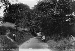 Shere, Combe Bottom Lane 1903