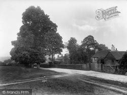 Shere, Heath 1928