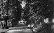 Shere, The Avenue 1904