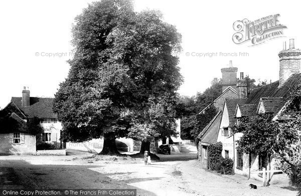 Photo of Shere, The Village 1903