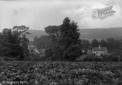 Shere, View From Church Field 1913