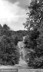 Shirley, Hills c.1960