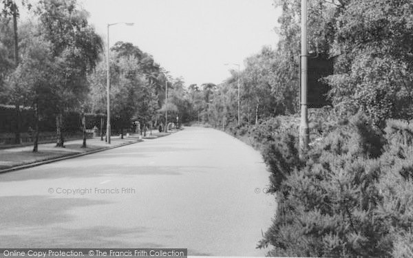 Photo of Shirley, Shirley Hills Road c.1960