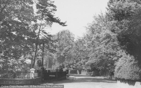 Photo of Shirley, Succombs Hill c.1960