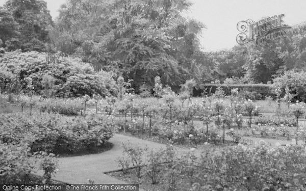 Photo of Shirley, The Rose Garden, Coombe Woods c.1960