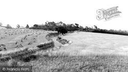 Shotley, Village c.1955