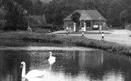 Shottermill, the Pond c1955