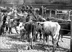 Shrewsbury, Cattle Market, Smithfield Road 1891