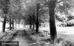 Chestnut Grove c.1965, Shrivenham