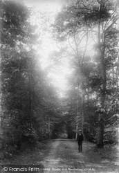 Shute Hill Plantation 1902, Shute