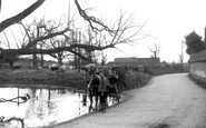 Sixpenny Handley, Frogmore Pond c1950