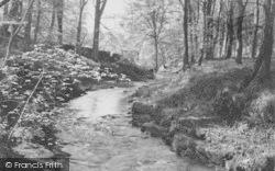 Shay Woods c.1955, Slaidburn
