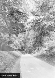 Slindon, Woods Bottom c.1965
