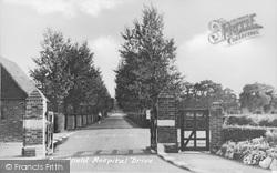 Smallfield, Hospital Drive c.1955