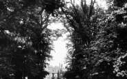 Somerleyton, The Avenue 1891