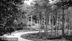 Soudley, Soudley Lane c.1960