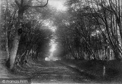 South Godstone, Danemore Lane 1908