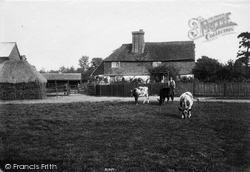 South Godstone, Posterngate Farm 1909