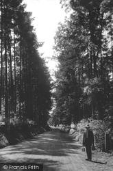 South Godstone, Tilburstow Hill, The Plantation 1908