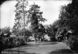 South Godstone, Yew Tree Farm 1909