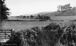 South Harting, The Downs From Oak Wood c.1955