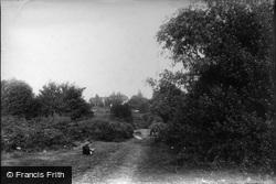 South Holmwood, 1906