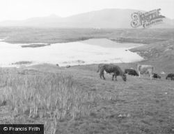 South Uist, From Bornish House 1963