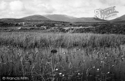 South Uist, Water Lilies 1963