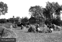 South Walsham, Broad, Harvest Scene 1902