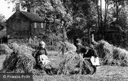 Children In A Corn Field 1902, South Walsham