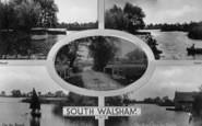 South Walsham photo
