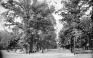 Southampton, The Avenue 1908