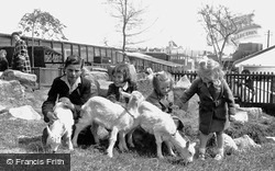 Children's Zoo c.1955, Southport