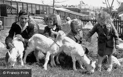Petting The Goats, Children's Zoo c.1955, Southport