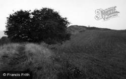 Cadbury Castle 1956, Sparkford