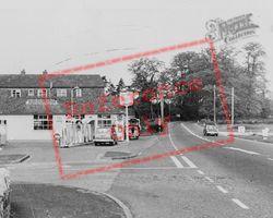 The Avenue c.1955, Sparkford