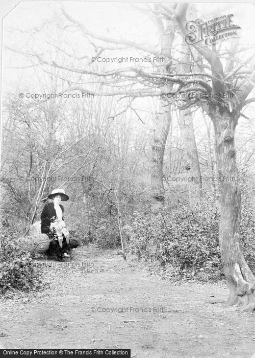 Photo of A Lady In The Woods c.1912