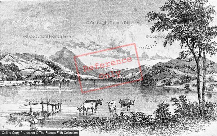 Photo of A Rural Scene