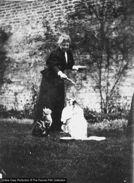 Photo of A Victorian Lady And Her Pets c.1880