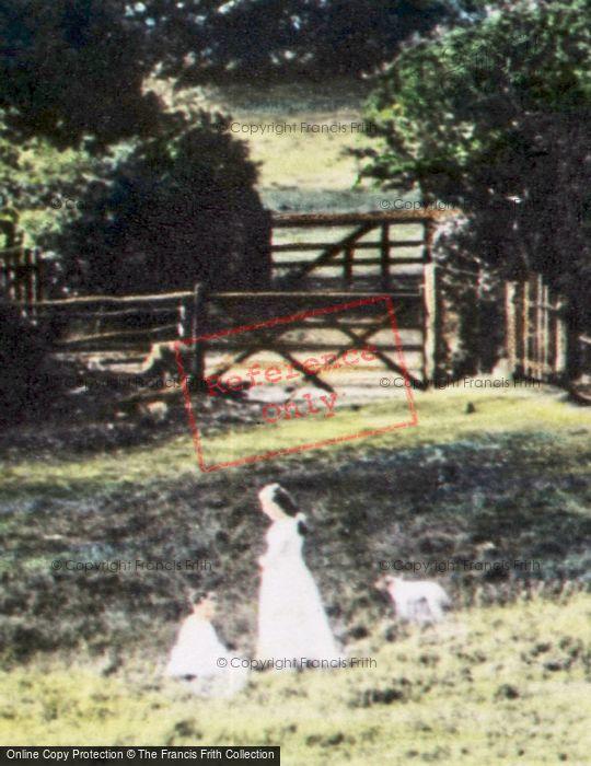 Photo of Children 1892
