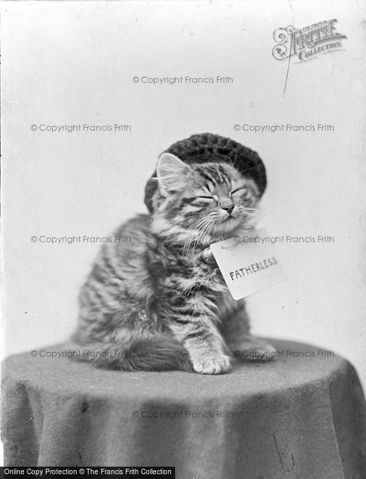 Photo of Fatherless c.1890