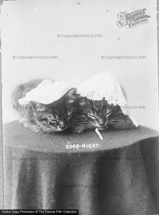 Photo of Good Night c.1890