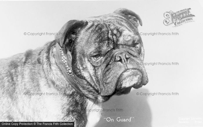 Photo of On Guard c.1920
