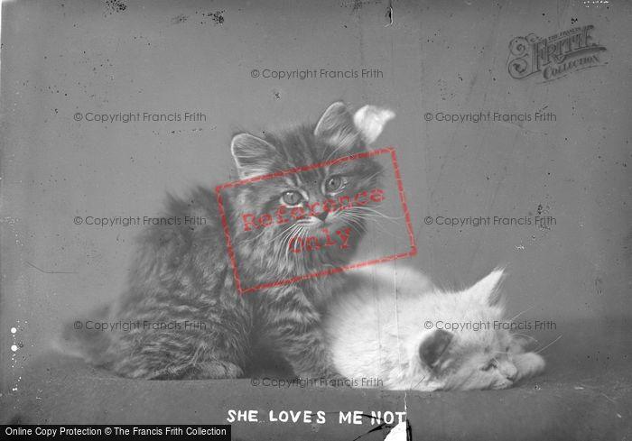 Photo of She Loves Me Not c.1890