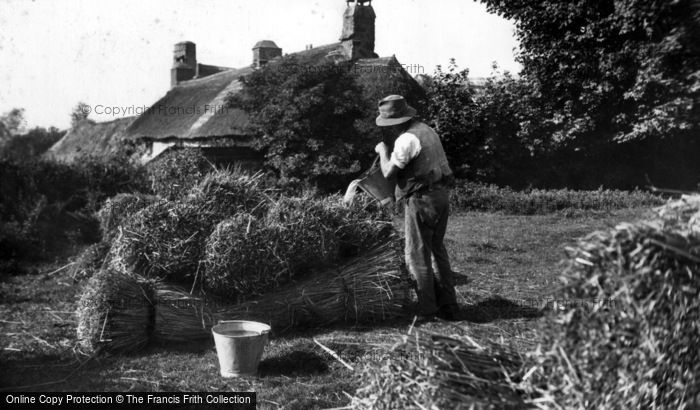 Photo of Thatching, Preparing The Reed c.1910
