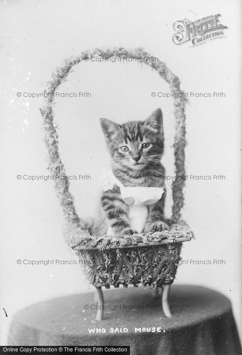 Photo of Who Said Mouse? c.1890