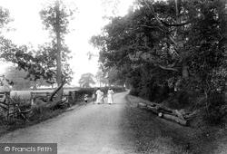 Lawn Lane 1906, Springfield